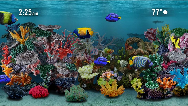 Aquarium Screensaver Roku Channel
