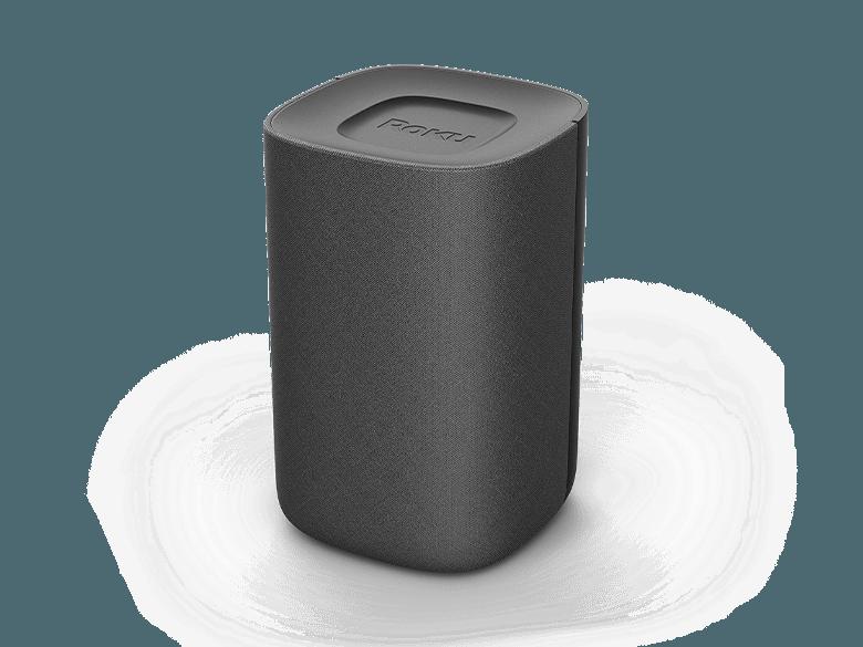Look before you buy: Single Roku TV Wireless Speaker