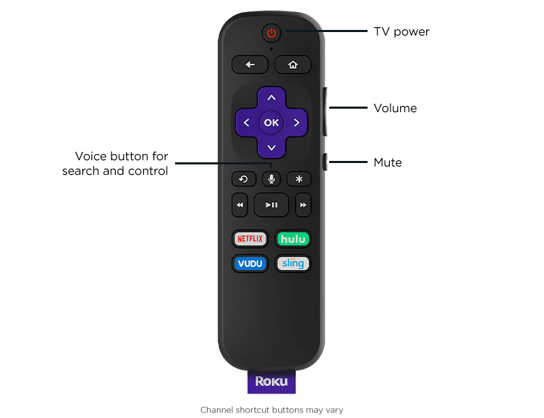 Look before you buy: Voice Remote with TV power, volume, and mute buttons that comes with Roku E...